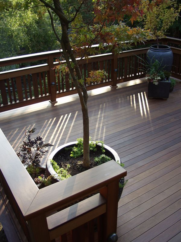 spotlight - ipe decking